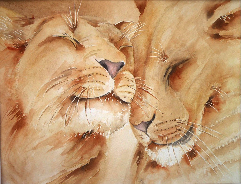 Tendresse Lions