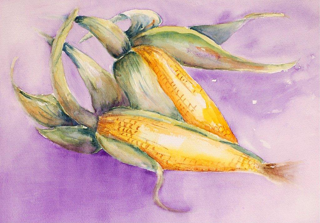 Epris de maïs