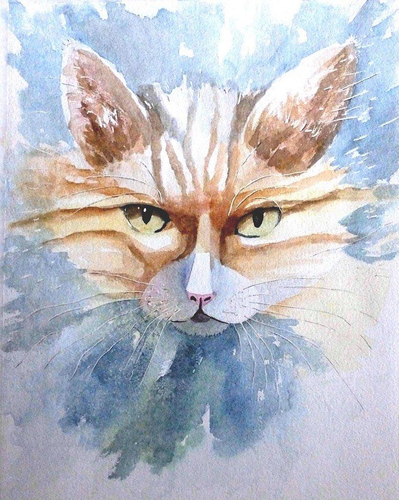 La maman du chaton