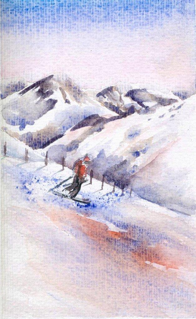 Carte de voeux skieur